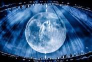 満月とつる