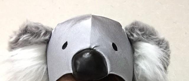 コアラの帽子